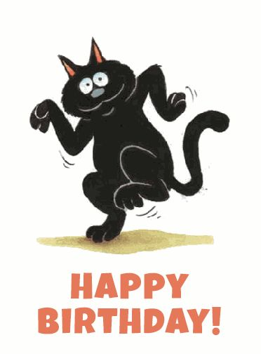 Happy Birthday Cat GIFs. 40 Animated Greeting Cards