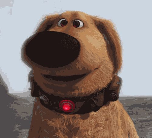 Smiling Dogs GIFs. 30 Animated Pics of Cute Dog Smiles