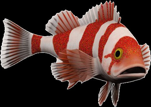 Fish GIFs. 190 Animated GIF Images. Download for Free!