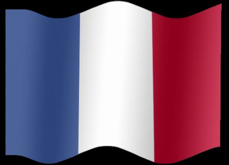 French Flag GIFs. 23 Animated Tricolor Images For Free