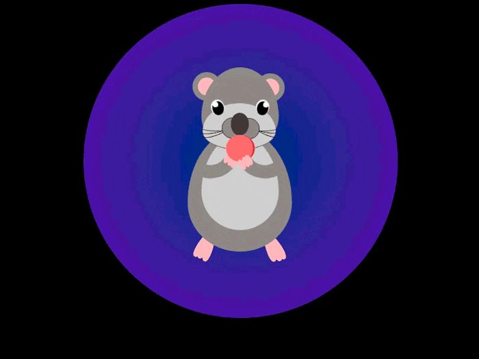 Hamsters GIFs. 110 animated GIF images of Hamsters for free