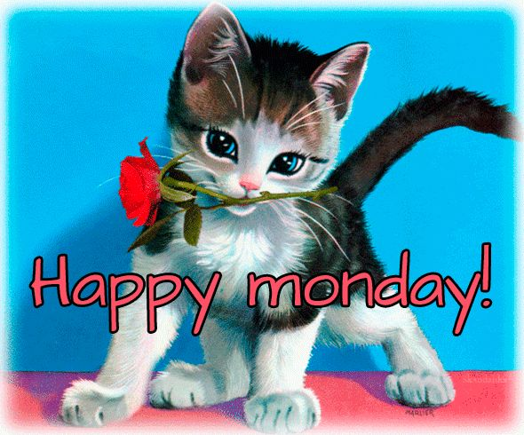 Happy Monday GIFs  58 Funny Animated Images For Free