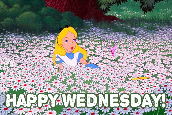 Happy Wednesday GIFs. 50 Animated Images of Good Wishes