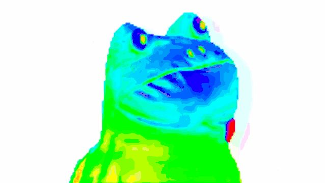 Rainbow Frog GIFs. Different Versions of This Meme on Animated Pics