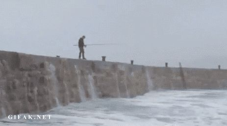 Funny Fishing GIFs. 73 Pieces of Animated Pictures About Fishing