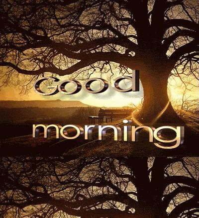 Good Morning GIF Images  110+ Beautiful Animated Pictures
